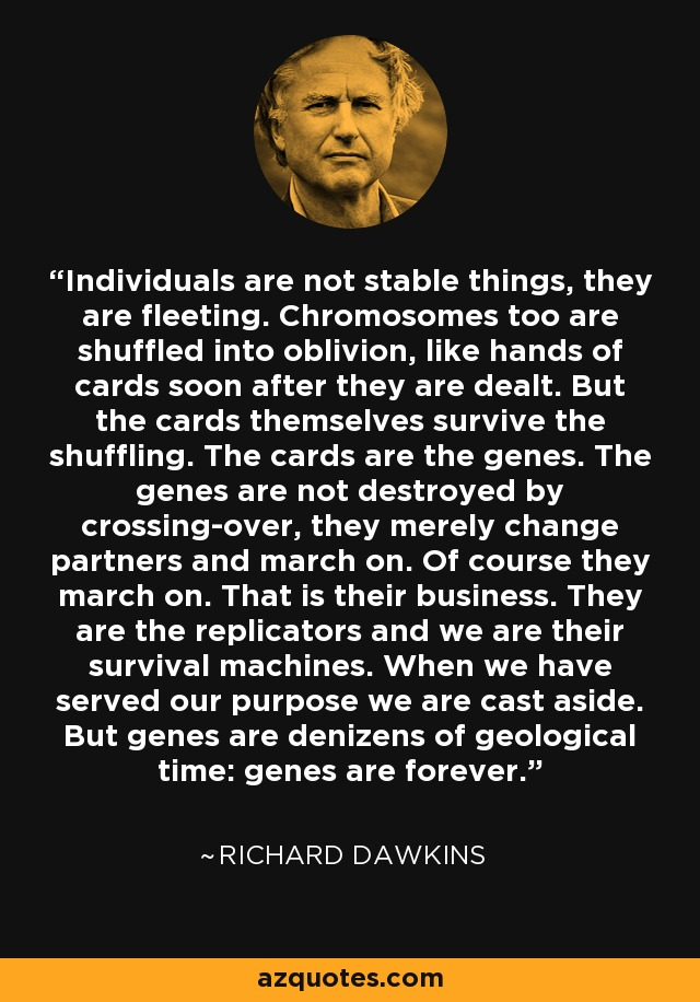 Individuals are not stable things, they are fleeting. Chromosomes too are shuffled into oblivion, like hands of cards soon after they are dealt. But the cards themselves survive the shuffling. The cards are the genes. The genes are not destroyed by crossing-over, they merely change partners and march on. Of course they march on. That is their business. They are the replicators and we are their survival machines. When we have served our purpose we are cast aside. But genes are denizens of geological time: genes are forever. - Richard Dawkins