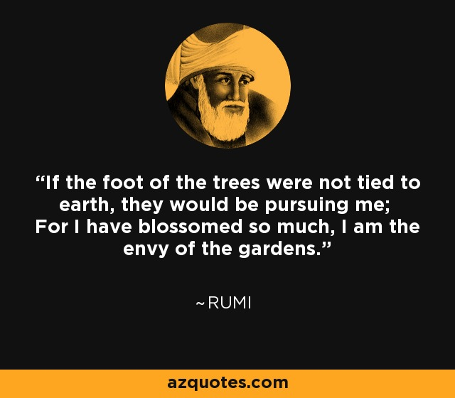 If the foot of the trees were not tied to earth, they would be pursuing me; For I have blossomed so much, I am the envy of the gardens. - Rumi