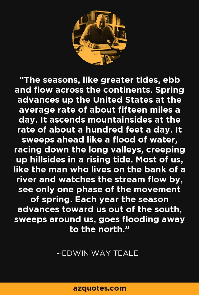 The seasons, like greater tides, ebb and flow across the continents. Spring advances up the United States at the average rate of about fifteen miles a day. It ascends mountainsides at the rate of about a hundred feet a day. It sweeps ahead like a flood of water, racing down the long valleys, creeping up hillsides in a rising tide. Most of us, like the man who lives on the bank of a river and watches the stream flow by, see only one phase of the movement of spring. Each year the season advances toward us out of the south, sweeps around us, goes flooding away to the north. - Edwin Way Teale