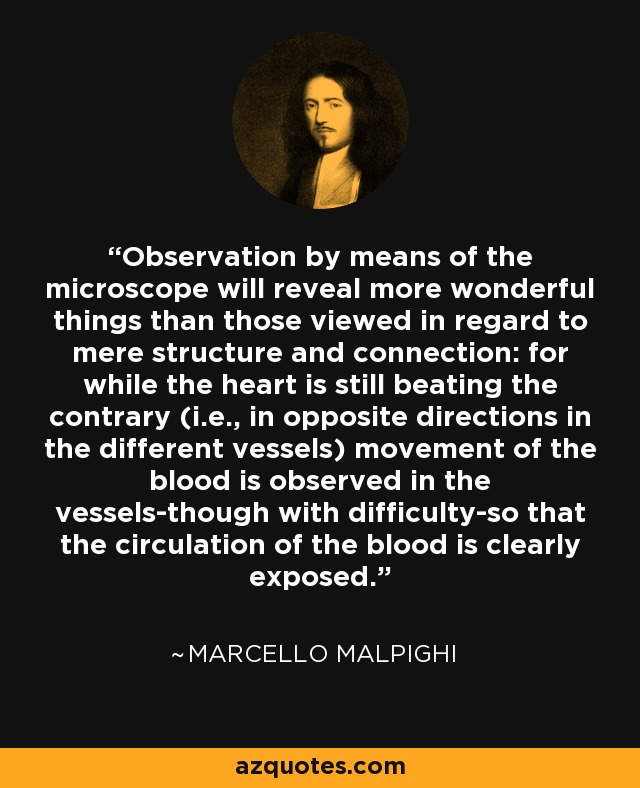Observation by means of the microscope will reveal more wonderful things than those viewed in regard to mere structure and connection: for while the heart is still beating the contrary (i.e., in opposite directions in the different vessels) movement of the blood is observed in the vessels-though with difficulty-so that the circulation of the blood is clearly exposed. - Marcello Malpighi