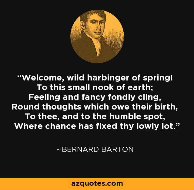 Welcome, wild harbinger of spring! To this small nook of earth; Feeling and fancy fondly cling, Round thoughts which owe their birth, To thee, and to the humble spot, Where chance has fixed thy lowly lot. - Bernard Barton