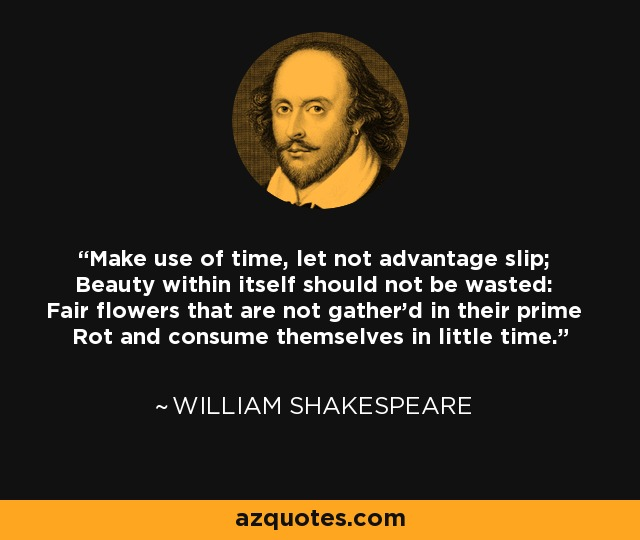 Make use of time, let not advantage slip; Beauty within itself should not be wasted: Fair flowers that are not gather'd in their prime Rot and consume themselves in little time. - William Shakespeare