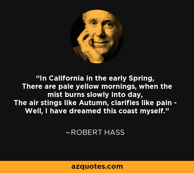 In California in the early Spring, There are pale yellow mornings, when the mist burns slowly into day, The air stings like Autumn, clarifies like pain - Well, I have dreamed this coast myself. - Robert Hass