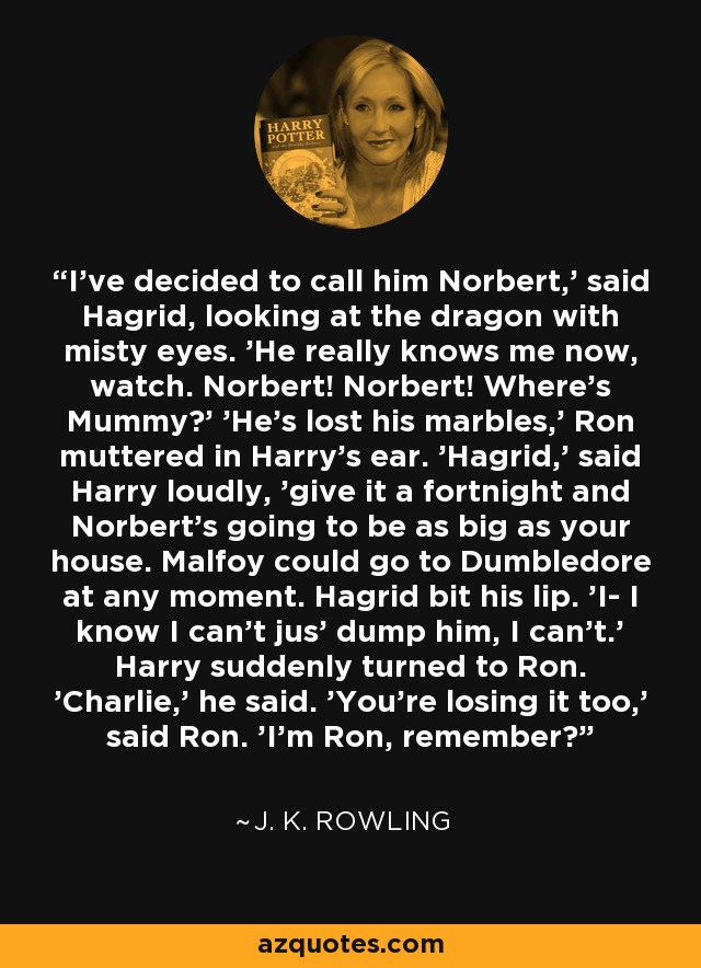 I've decided to call him Norbert,' said Hagrid, looking at the dragon with misty eyes. 'He really knows me now, watch. Norbert! Norbert! Where's Mummy?' 'He's lost his marbles,' Ron muttered in Harry's ear. 'Hagrid,' said Harry loudly, 'give it a fortnight and Norbert's going to be as big as your house. Malfoy could go to Dumbledore at any moment. Hagrid bit his lip. 'I- I know I can't jus' dump him, I can't.' Harry suddenly turned to Ron. 'Charlie,' he said. 'You're losing it too,' said Ron. 'I'm Ron, remember? - J. K. Rowling