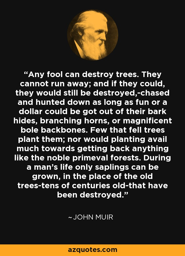 Any fool can destroy trees. They cannot run away; and if they could, they would still be destroyed,-chased and hunted down as long as fun or a dollar could be got out of their bark hides, branching horns, or magnificent bole backbones. Few that fell trees plant them; nor would planting avail much towards getting back anything like the noble primeval forests. During a man's life only saplings can be grown, in the place of the old trees-tens of centuries old-that have been destroyed. - John Muir