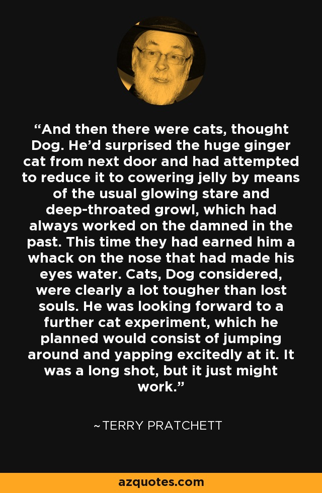 And then there were cats, thought Dog. He'd surprised the huge ginger cat from next door and had attempted to reduce it to cowering jelly by means of the usual glowing stare and deep-throated growl, which had always worked on the damned in the past. This time they had earned him a whack on the nose that had made his eyes water. Cats, Dog considered, were clearly a lot tougher than lost souls. He was looking forward to a further cat experiment, which he planned would consist of jumping around and yapping excitedly at it. It was a long shot, but it just might work. - Terry Pratchett