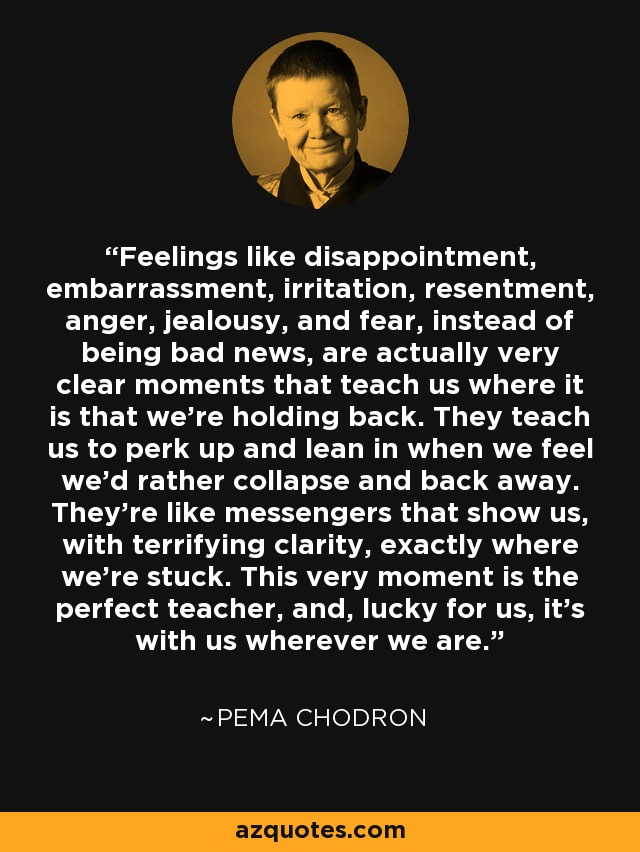 …feelings like disappointment, embarrassment, irritation, resentment, anger, jealousy, and fear, instead of being bad news, are actually very clear moments that teach us where it is that we're holding back. They teach us to perk up and lean in when we feel we'd rather collapse and back away. They're like messengers that show us, with terrifying clarity, exactly where we're stuck. This very moment is the perfect teacher, and, lucky for us, it's with us wherever we are. - Pema Chodron