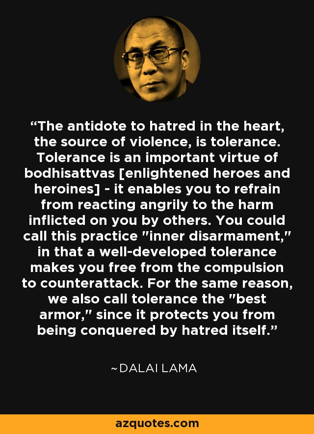 The antidote to hatred in the heart, the source of violence, is tolerance. Tolerance is an important virtue of bodhisattvas [enlightened heroes and heroines] - it enables you to refrain from reacting angrily to the harm inflicted on you by others. You could call this practice
