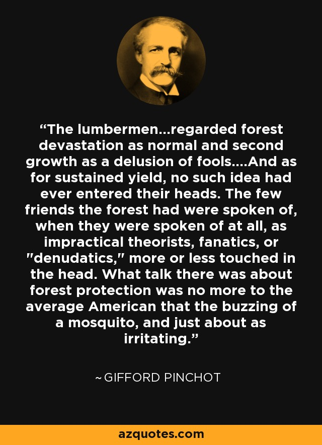 The lumbermen...regarded forest devastation as normal and second growth as a delusion of fools....And as for sustained yield, no such idea had ever entered their heads. The few friends the forest had were spoken of, when they were spoken of at all, as impractical theorists, fanatics, or