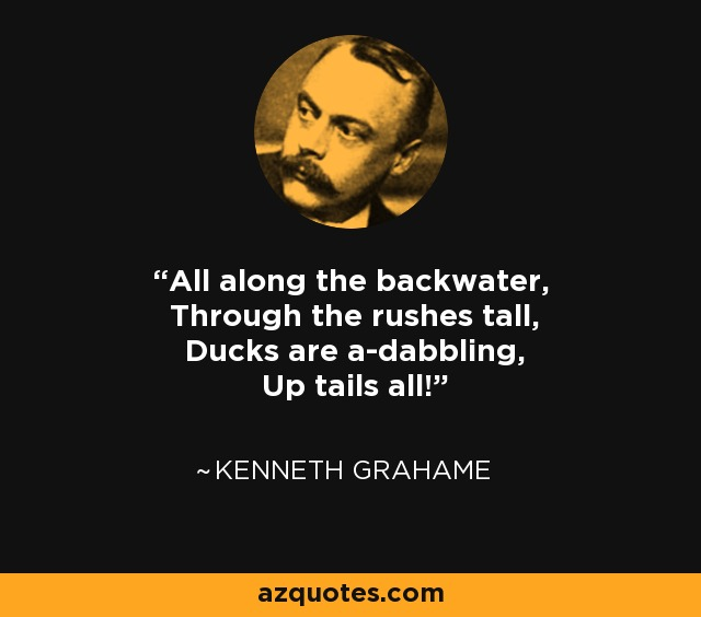 All along the backwater, Through the rushes tall, Ducks are a-dabbling, Up tails all! - Kenneth Grahame