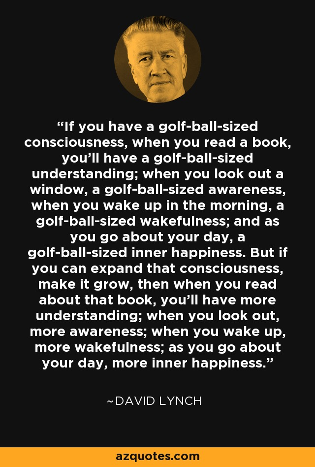 If you have a golf-ball-sized consciousness, when you read a book, you'll have a golf-ball-sized understanding; when you look out a window, a golf-ball-sized awareness, when you wake up in the morning, a golf-ball-sized wakefulness; and as you go about your day, a golf-ball-sized inner happiness. But if you can expand that consciousness, make it grow, then when you read about that book, you'll have more understanding; when you look out, more awareness; when you wake up, more wakefulness; as you go about your day, more inner happiness. - David Lynch
