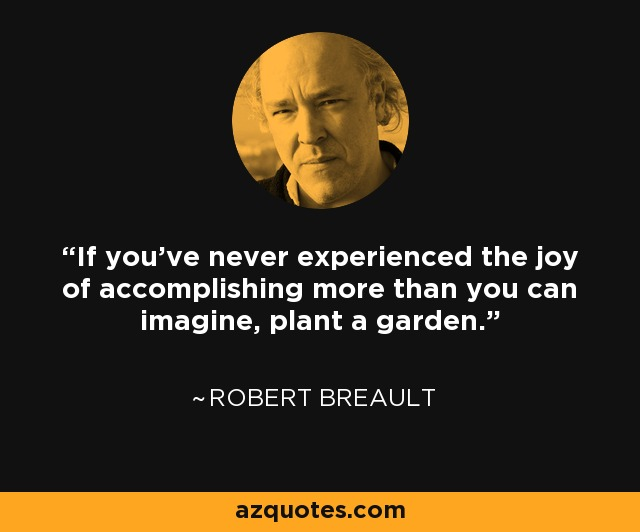 If you've never experienced the joy of accomplishing more than you can imagine, plant a garden. - Robert Brault
