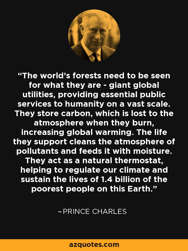 The world's forests need to be seen for what they are - giant global utilities, providing essential public services to humanity on a vast scale. They store carbon, which is lost to the atmosphere when they burn, increasing global warming. The life they support cleans the atmosphere of pollutants and feeds it with moisture. They act as a natural thermostat, helping to regulate our climate and sustain the lives of 1.4 billion of the poorest people on this Earth. - Prince Charles
