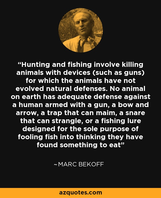 Hunting and fishing involve killing animals with devices (such as guns) for which the animals have not evolved natural defenses. No animal on earth has adequate defense against a human armed with a gun, a bow and arrow, a trap that can maim, a snare that can strangle, or a fishing lure designed for the sole purpose of fooling fish into thinking they have found something to eat - Marc Bekoff