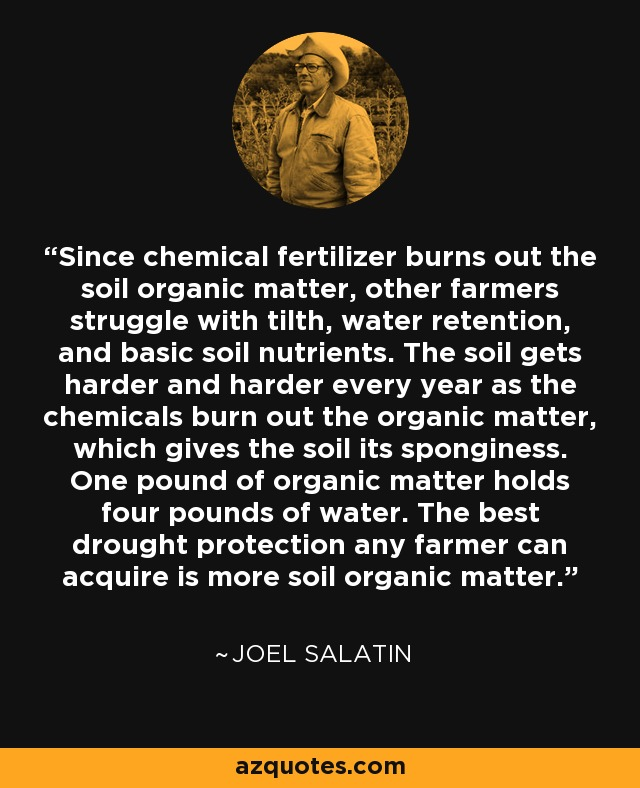 Since chemical fertilizer burns out the soil organic matter, other farmers struggle with tilth, water retention, and basic soil nutrients. The soil gets harder and harder every year as the chemicals burn out the organic matter, which gives the soil its sponginess. One pound of organic matter holds four pounds of water. The best drought protection any farmer can acquire is more soil organic matter. - Joel Salatin
