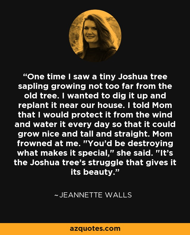 One time I saw a tiny Joshua tree sapling growing not too far from the old tree. I wanted to dig it up and replant it near our house. I told Mom that I would protect it from the wind and water it every day so that it could grow nice and tall and straight. Mom frowned at me.