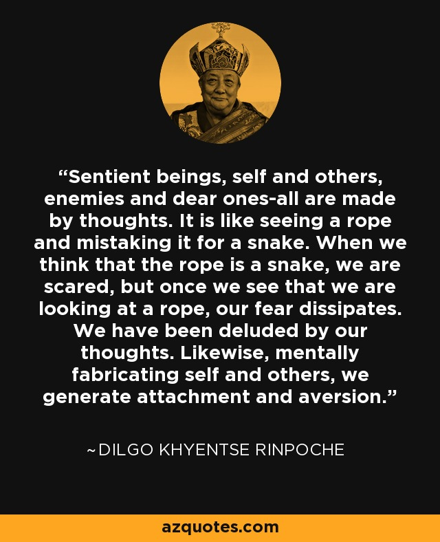 Sentient beings, self and others, enemies and dear ones-all are made by thoughts. It is like seeing a rope and mistaking it for a snake. When we think that the rope is a snake, we are scared, but once we see that we are looking at a rope, our fear dissipates. We have been deluded by our thoughts. Likewise, mentally fabricating self and others, we generate attachment and aversion. - Dilgo Khyentse Rinpoche