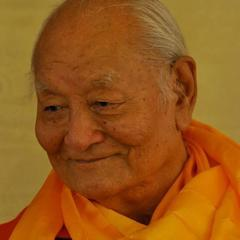 Tulku urgyen rinpoche quotes