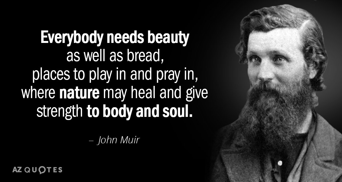 John Muir quote: Everybody needs beauty as well as bread, places to play in and pray...