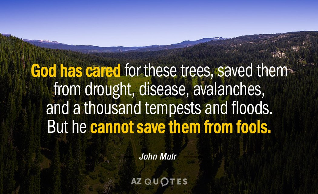 Top 25 Quotes By John Muir Of 322 A Z Quotes