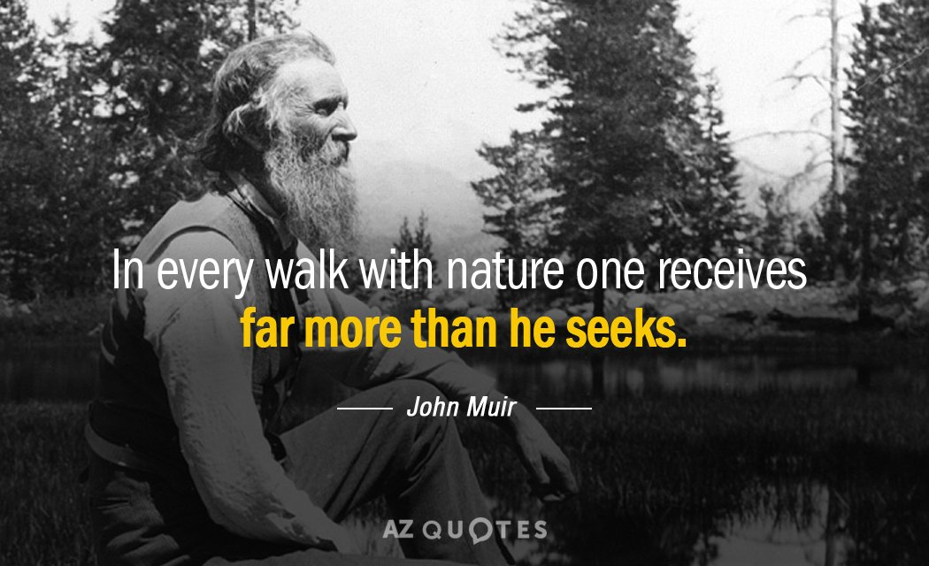 John Muir quote: In every walk with nature one receives far more than he seeks.