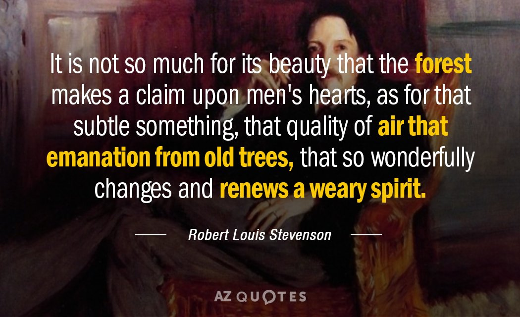 Robert Louis Stevenson quote: It is not so much for its beauty that the forest makes...