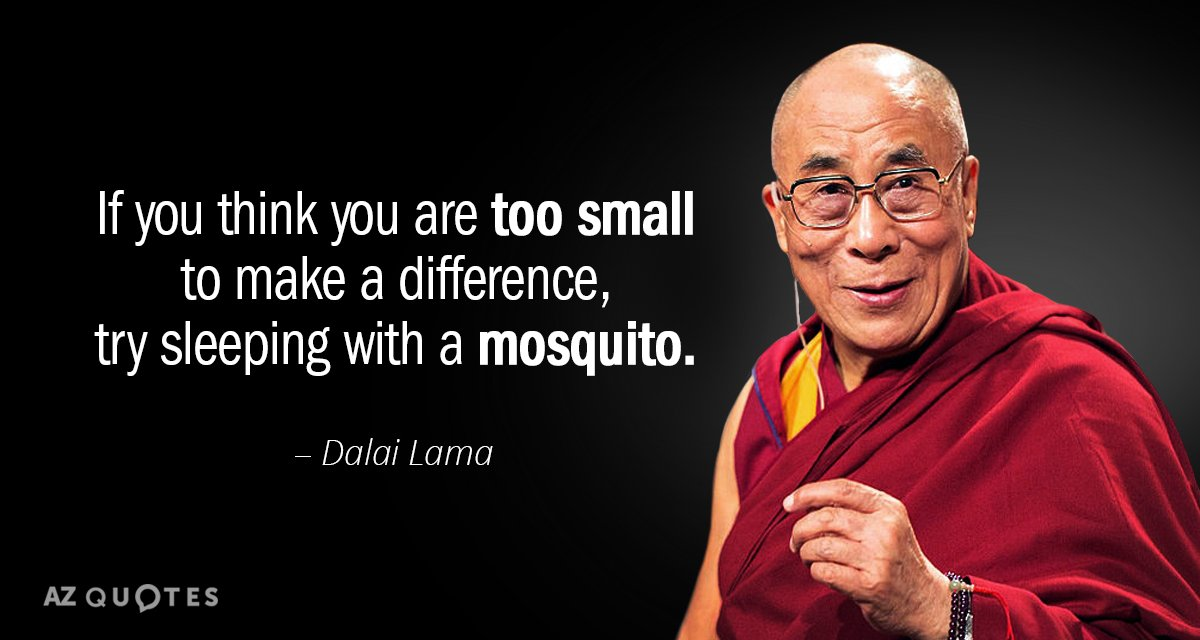 Dalai Lama quote: If you think you are too small to make a difference, try sleeping...