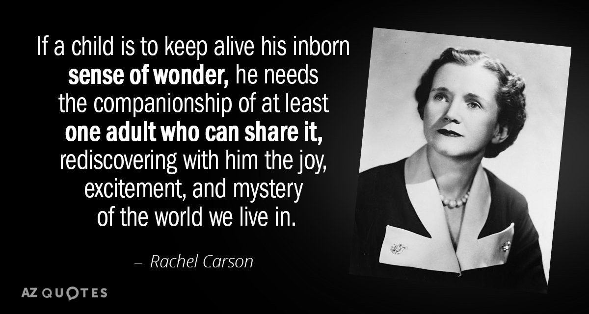 Rachel Carson quote: If a child is to keep alive his inborn sense of wonder, he...