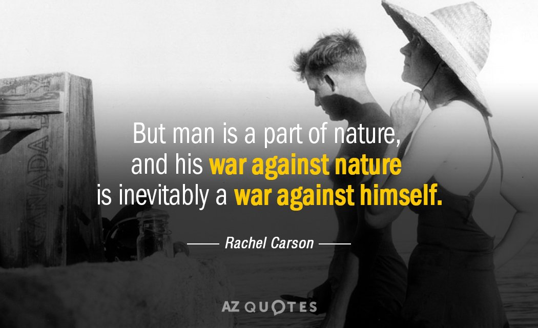 TOP 25 QUOTES BY RACHEL CARSON (of 131)