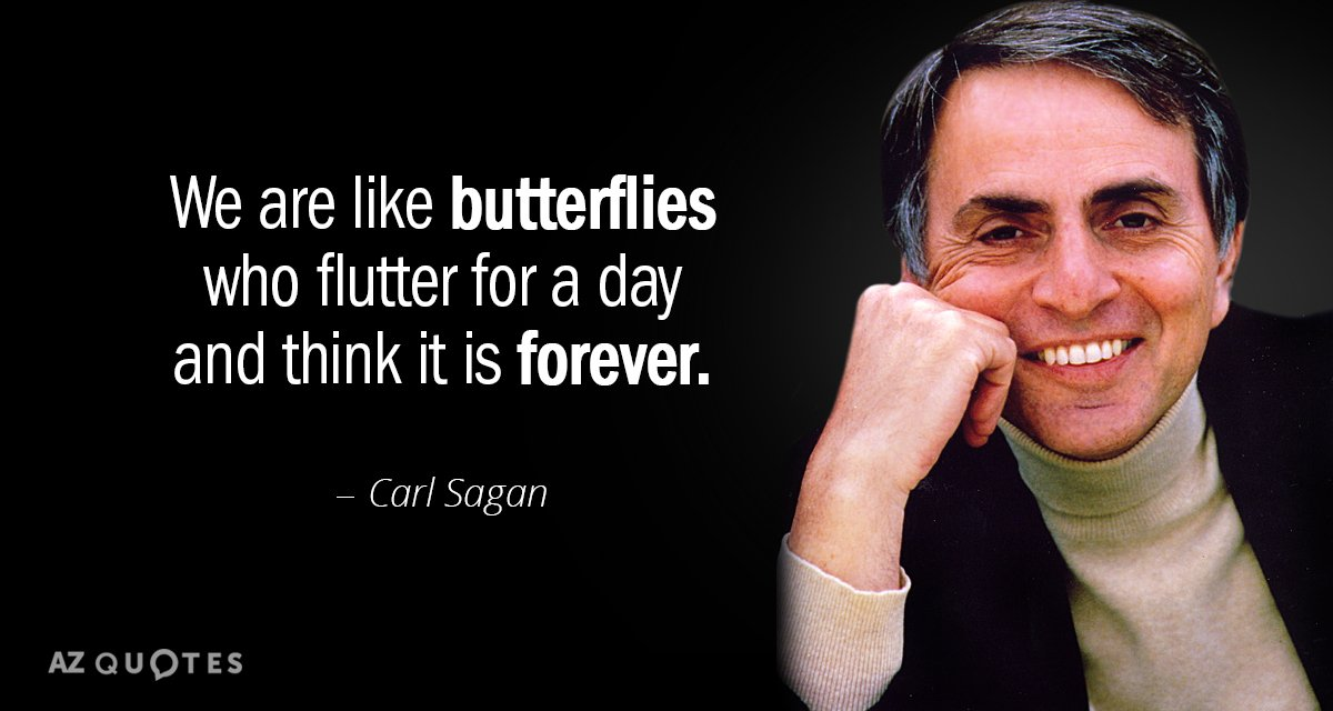 Carl Sagan quote: We are like butterflies who flutter for a day and think it is...