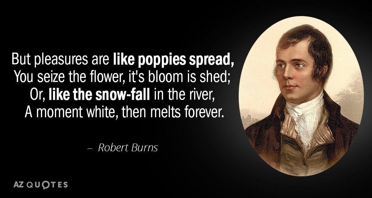 Robert Burns quote: But pleasures are like poppies spread, You seize the flower, it's bloom is...