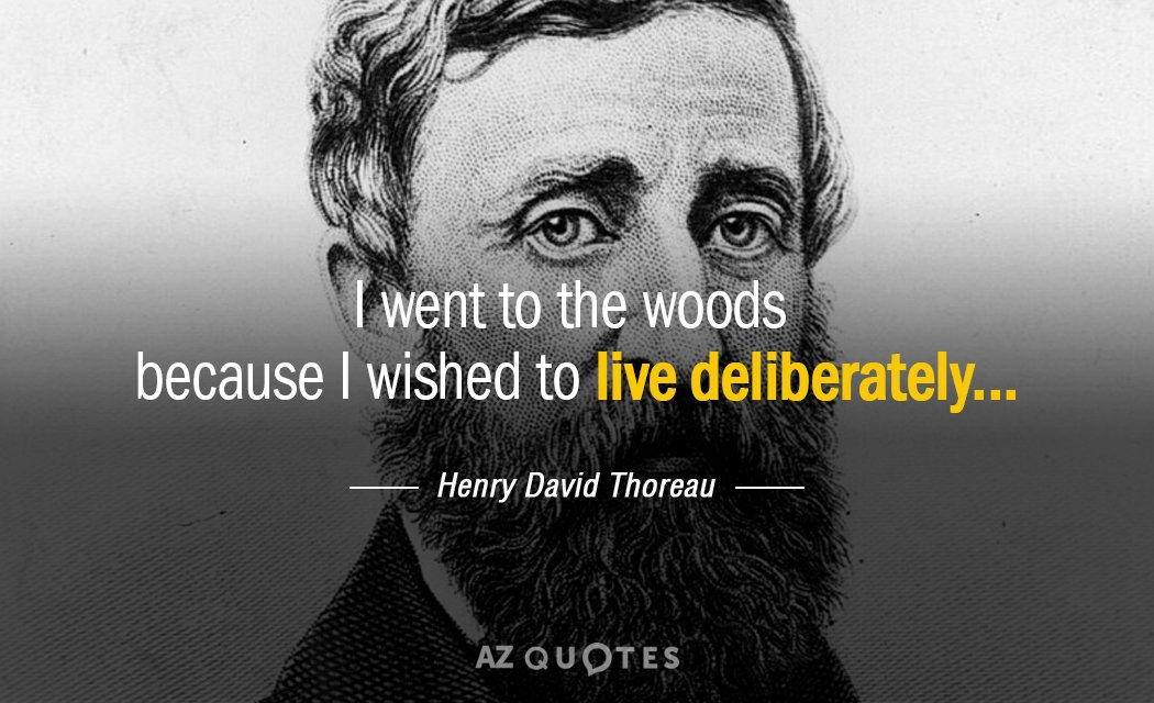 Henry David Thoreau quote: I went to the woods because I wished to live deliberately.