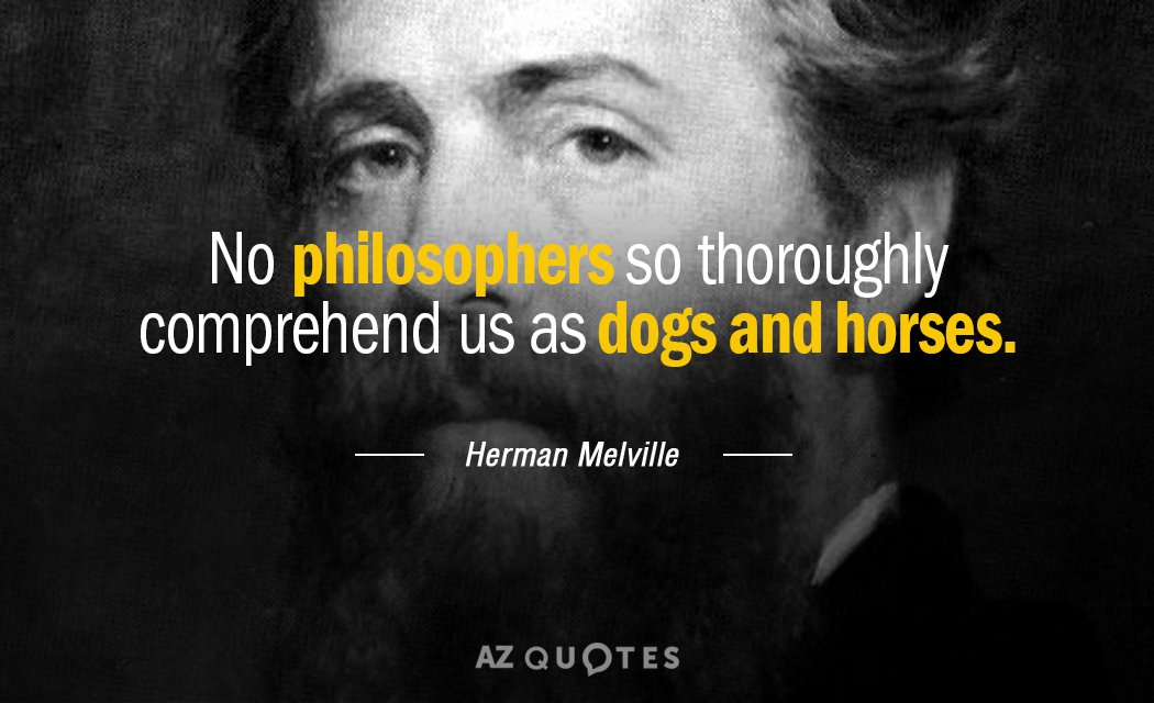 Herman Melville Quotes | Herman Melville Quote No Philosophers So Thoroughly Comprehend Us